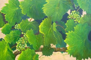 Wine Grapes, 2009. Acrylic on canvas, 61 x 91cm.